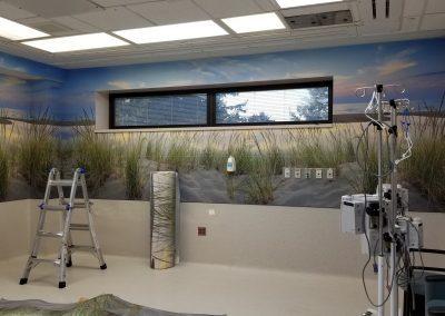 Ann Arbor Surgical Room Install